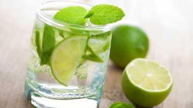 Lahap Gulai Daging, Opor atau Sayur Ketupat, Minumnya Air Jeruk Nipis Ya