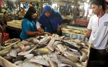 Razia Pasar Jelang Lebaran, Disita Sejumlah Ikan Berformalin