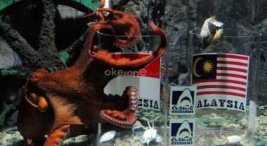Pengunjung Terhibur Lihat Atraksi Gurita Raksasa dari Jepang di Ancol