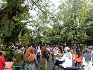 Lebaran Hari Kedua, Kebun Binatang Ragunan Padat, Ini Foto-Fotonya!