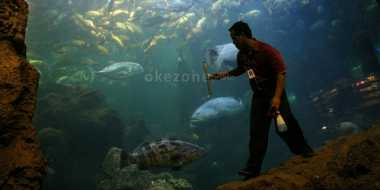 5 Wahana Paling Favorit di Ancol ketika Libur Lebaran