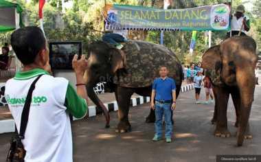 5 Kandang Binatang Favorit Wisatawan di Ragunan