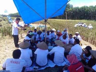 Perindo Kuningan Siap Cetak 2.000 Petani Muda demi Indonesia Sejahtera