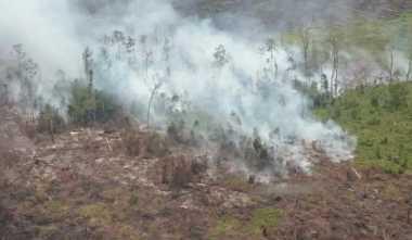 Lagi, Puluhan Hektare Lahan Gambut di Aceh Barat Terbakar