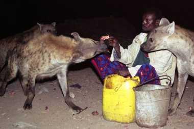 Gila! Keluarga di Ethiopia Bersahabat dengan Hyena di Alam Liar