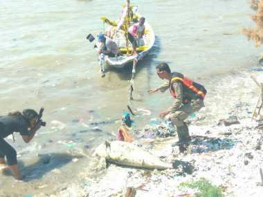 Bangkai Lumba-Lumba Ditemukan di Pantai Kenjeran Surabaya
