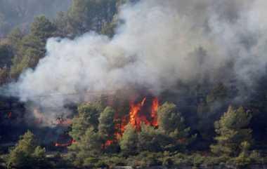 Duh! Kebakaran Hutan Prancis Hanguskan Ribuan Hektar Lahan dan Tempat Wisata