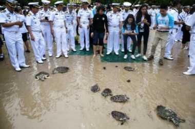 Peringati Ultah Raja, Warga Thailand Lepaskan 1.066 Kura-Kura