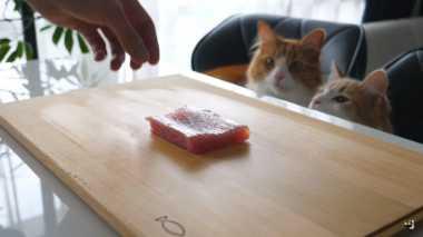 VIDEO: Lucu! Chef Persiapkan Hidangan Sushi untuk Kucingnya