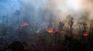 Diduga Karhutla, BMKG Deteksi 6 Titik Panas di Riau
