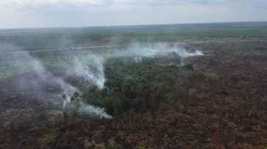Tanggulangi Kebakaran Lahan Gambut di Aceh Barat, BNPB Kerahkan 2 Helikopter Bom Air