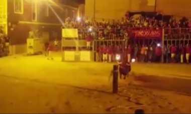 VIDEO: Tragis! Tanduknya Dibakar Api, Banteng Ini Mati Bunuh Diri