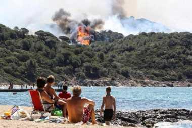 Duuh! Diduga Picu Kebakaran Hutan di Prancis, Dua Remaja Ditangkap