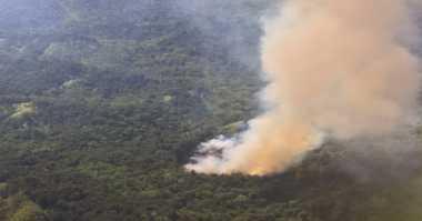 Rasain! Salah Satu Pembakar Lahan di Riau Ditangkap, Pelakunya Karyawan Swasta