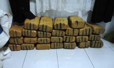 Heboh! Pedagang Sayur Temukan Ganja 50 Kg di Pasar