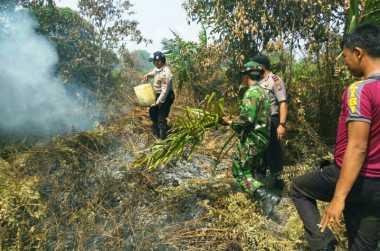 30 Hektare Lahan dan Kebun Warga Hangus Terbakar di Riau