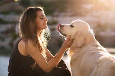 Jangan Sembarangan! Anjing Kesayangan Tidak Boleh Dikasih Cokelat Lho, Ini Alasannya!