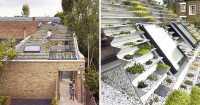 <i>Wow</i>! Ada Rumah dengan Atap Kebun Bertingkat, Penasaran seperti Apa Ya?