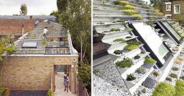 Wow! Ada Rumah dengan Atap Kebun Bertingkat, Penasaran seperti Apa Ya?