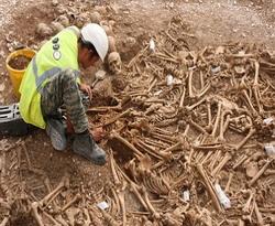 Arkeolog Temukan 51 Tengkorak Bangsa Viking