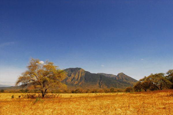 Nama Taman Nasional ini diambil dari nama gunung yang berada di daerah ini, yaitu Gunung Baluran.