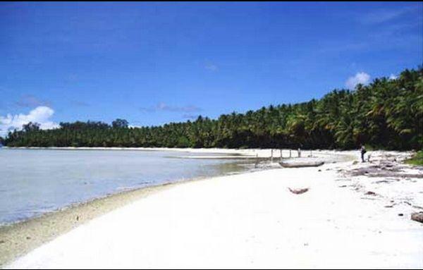 Keindahan Bawah Laut Kepulauan Padaido Okezone Travel