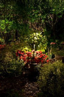 Taman Lebih Eksotis Dengan Pencahayaan Okezone Lifestyle