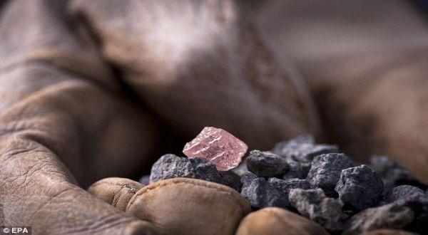 Foto : Berlian merah muda (EPA)