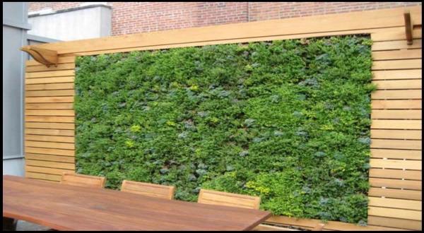 Tips kreasi taman vertikal dengan batu bata okezone economy for Jardines verticales con madera
