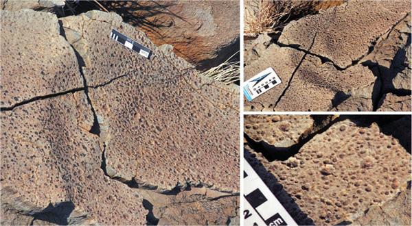 Fosil Hujan Ungkap Atmosfer Purba Bumi