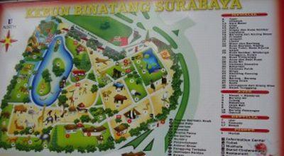 Kebon Binatang Surabaya (Foto: dok UNY)