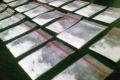 Sepanjang 2012, Bea Cukai Juanda Sita 2 Kilogram Sabu