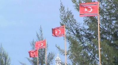Bendera GAM berkibar di Aceh Barat (Dok: Ofan Torang/Sindo TV)