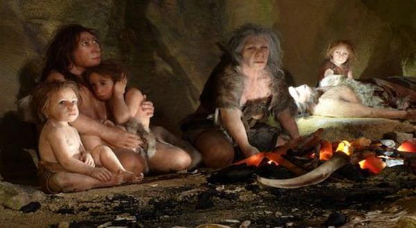 Inikah Bukti Nenek Moyang Manusia adalah Kera?