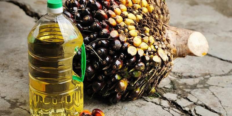 https: img.okezone.com content 2015 01 30 298 1099553 konsumsi-minyak-sawit-tiap-tahun-meningkat-JP3RNUY1JV.jpg