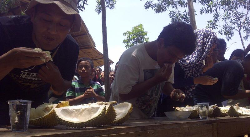 https: img.okezone.com content 2015 02 23 298 1109428 festival-durian-lokal-yogyakarta-sedot-ribuan-pengunjung-xngLAjZQ5P.jpg