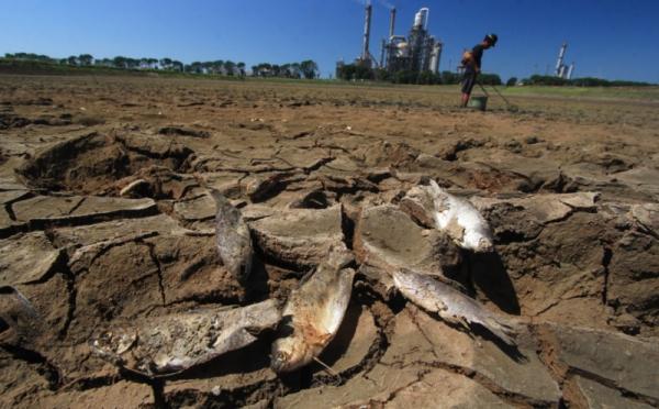 Ini Daerah yang Terkena Dampak El Nino
