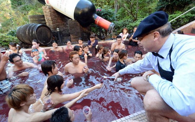 65 Gambar Anggur Merah Di Pantai Paling Hist