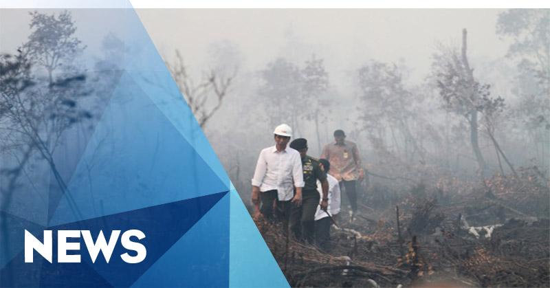 Gerindra: Pemerintahan Jokowi Edan!