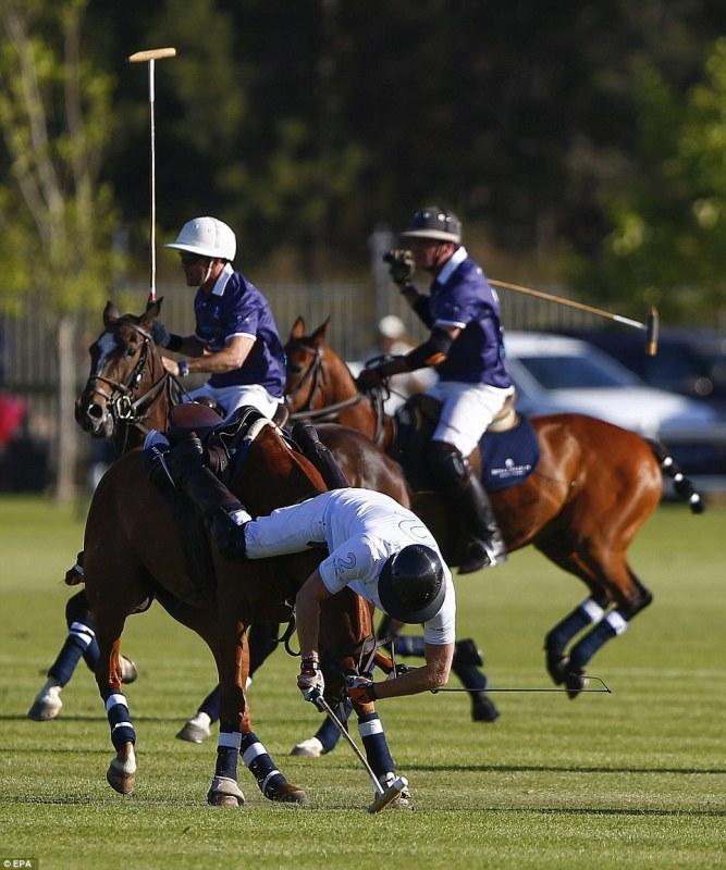 Main Polo, Pangeran Inggris Jatuh Dari Kuda Dua Kali