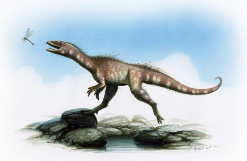 https: img.okezone.com content 2016 01 22 18 1294194 dinosaurus-201-juta-tahun-ini-akhirnya-diberi-nama-yYbNZrg4ns.jpg