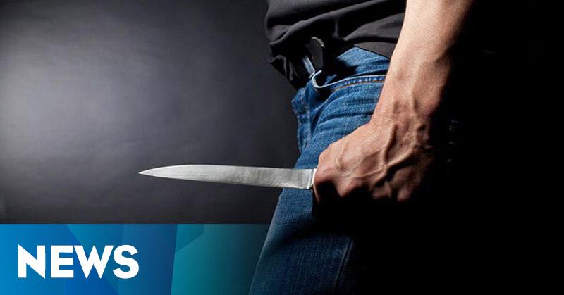 Polisi Tangkap PNS Pembacok Ibu Kandung
