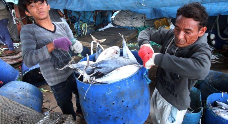 https: img.okezone.com content 2016 03 13 320 1334742 ratusan-nelayan-enggan-melaut-harga-ikan-naik-hingga-50-RxZdkBrF0Y.jpg