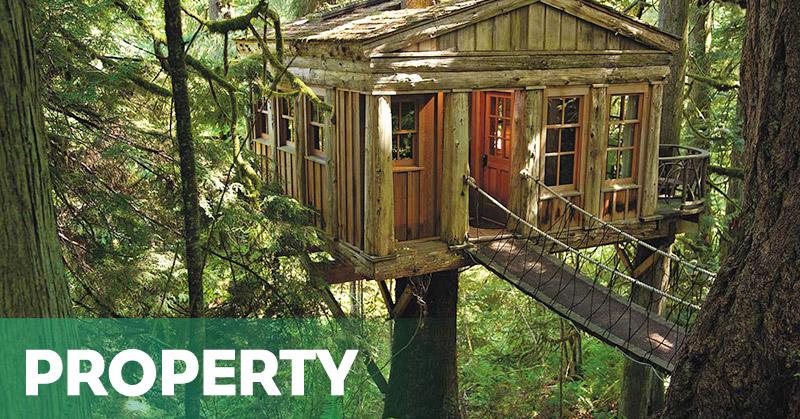 7 Desain Rumah Pohon yang Bikin Dekat dengan Alam