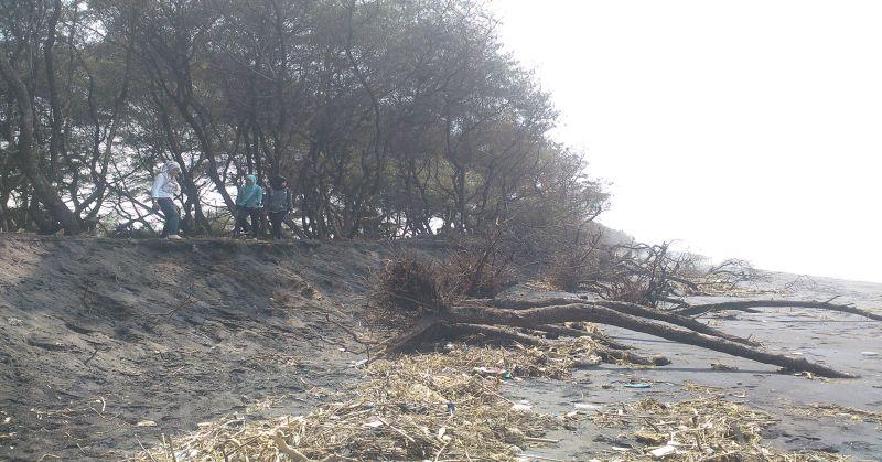 https: img.okezone.com content 2016 03 25 338 1345486 abrasi-pantai-di-wilayah-kabupaten-tangerang-memprihatinkan-VilZyNffiq.jpg
