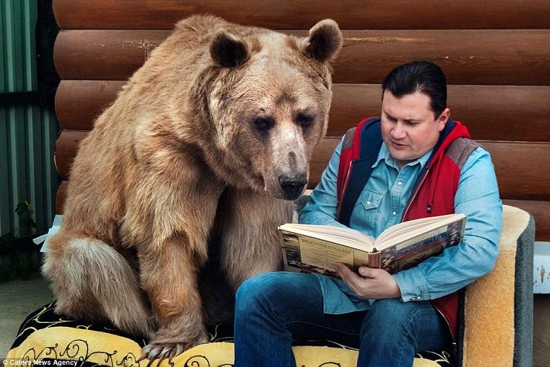 kisah-pasutri-yang-tinggal-dengan-beruang-selama-23-tahun