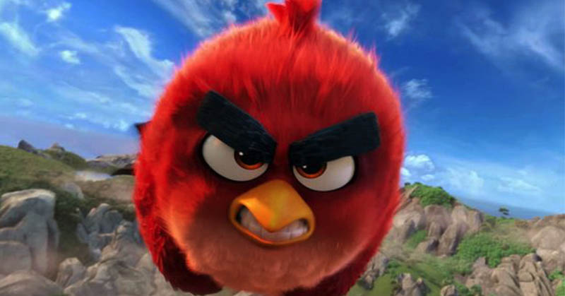 https: img.okezone.com content 2016 06 10 56 1411748 fotografer-tangkap-momen-red-angry-birds-di-dunia-nyata-CfKAW2FSWn.jpg