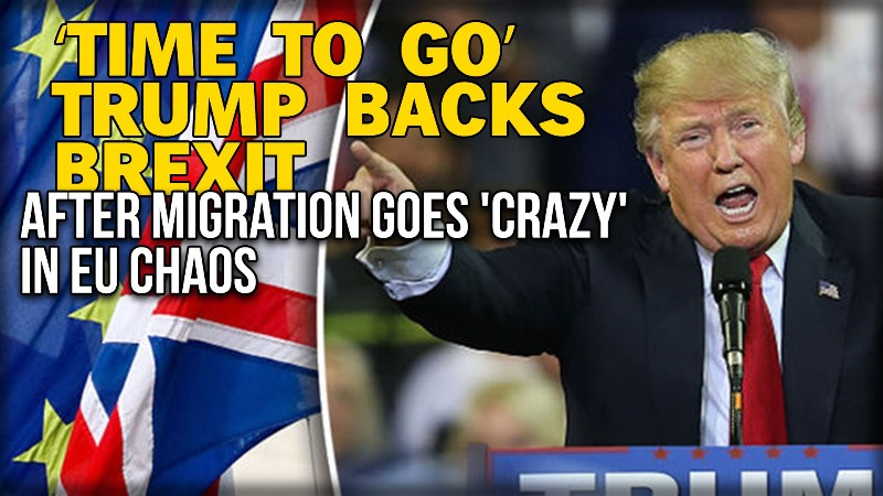 Image result for trump brexit