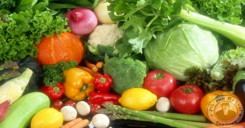 https: img.okezone.com content 2016 06 29 298 1428341 lima-jenis-sayuran-panggang-untuk-vegetarian-pemula-o8es1ELSXC.jpg
