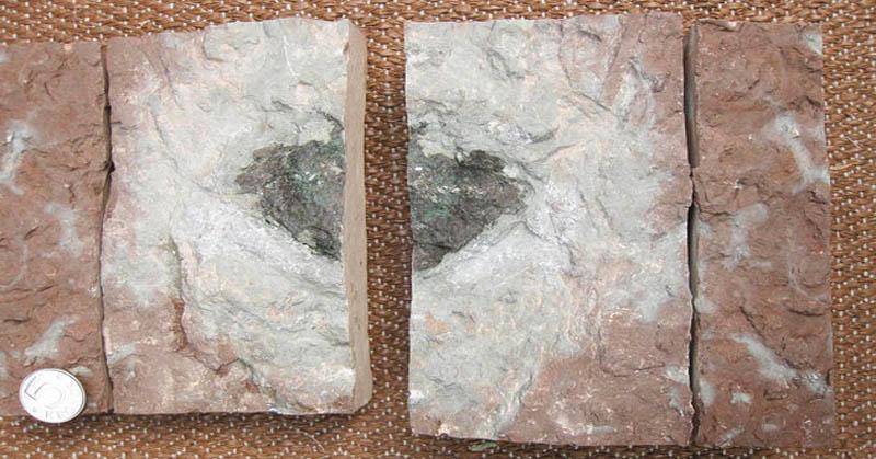 Sebuah Pecahan Batu Alien Ditemukan di Swedia